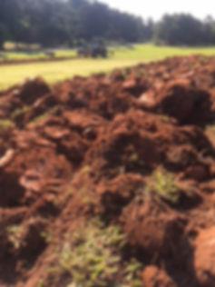 plowed earth.JPG