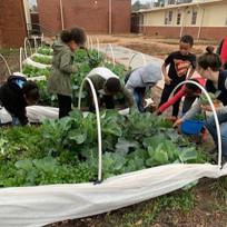 deanna boys girls club teaching garden