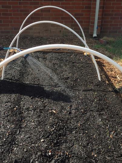teaching garden watering