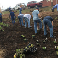 volunteers farm pollinator garden