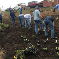volunteers farm pollinator garden