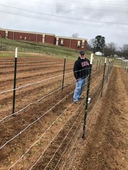farm volunteer planting