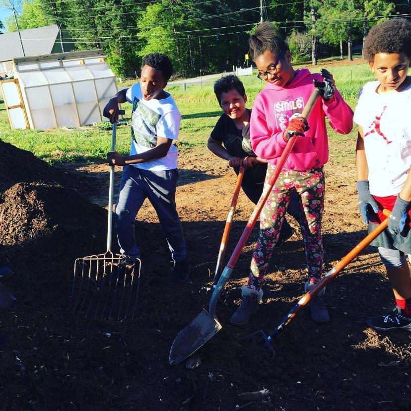 boys girls club compost