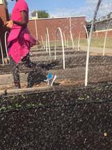 teaching garden