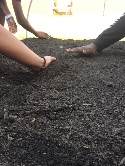 teaching garden planting seeds