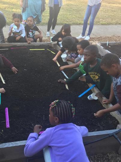 teaching garden with Ty