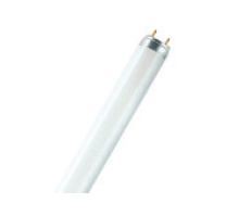 Osram 高原色素級T8光管長壽系列26mm管徑(德國製造) T8 Lumilux XT Fluorescent tube 26mm Diameter