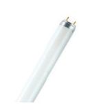 Osram 標準型T8光管系列26mm管徑(中國製造) T8 Basic Fluorescent tube 26mm Diameter