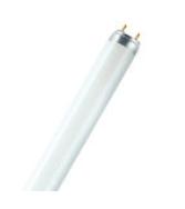 Osram 高原色素級T8光管超長壽系列26mm管徑(德國製造) T8Lumilux XXT Fluorescent tube 26mm Diameter