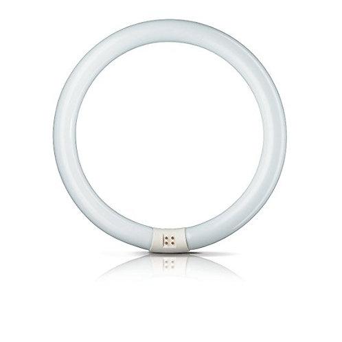 飛利浦圓管 Philips Circular fluo. Tube G10Q