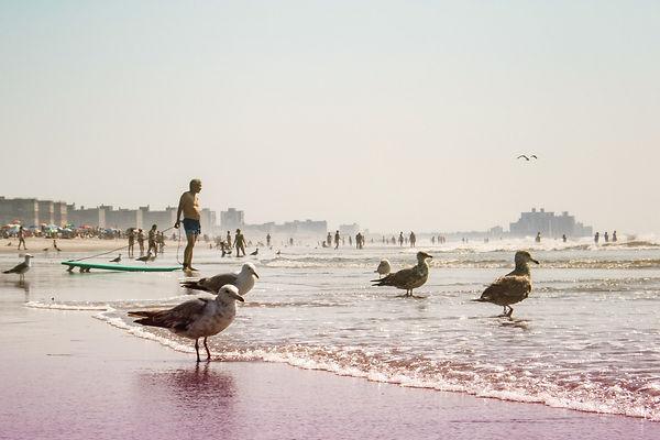 Shore_7280141Colorburn.jpg