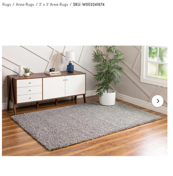 Rug Purchased For This Shoot
