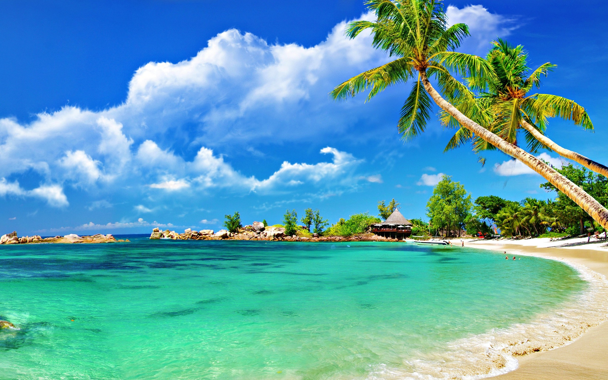 6982083-tropical-beach-scenery