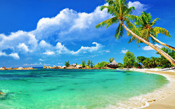 6982083-tropical-beach-scenery