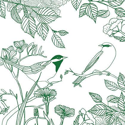 Love birds signed print