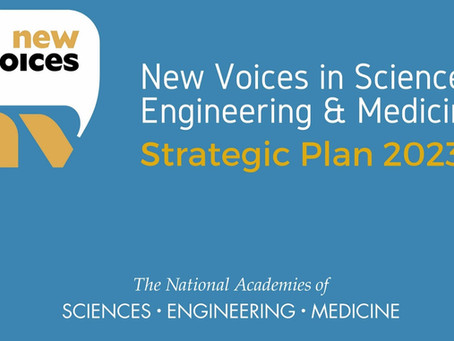 New Voices share their 3-year Strategic Plan