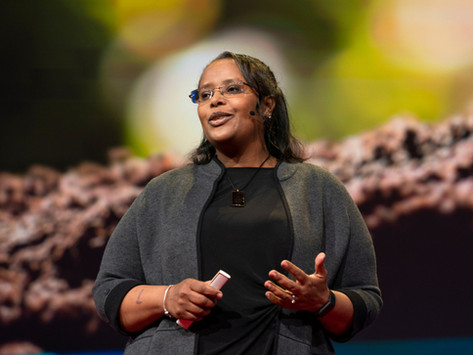 Dr. Asmeret Berhe at #TED2019: Stop treating soil like dirt.