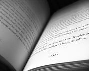 155-book-page-821139.jpg
