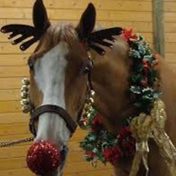 Christmas gymkhana and fancy dress