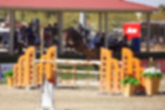 Selene Jump Pic4.jpg