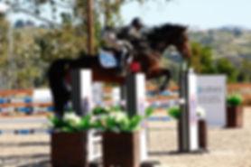 Desiree Jump Pic1.jpg