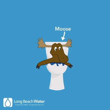 """Long Beach Water Department: """"Can't Flush This!"""" Campaign animation"""