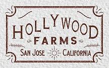 hollywood logo preview.jpg