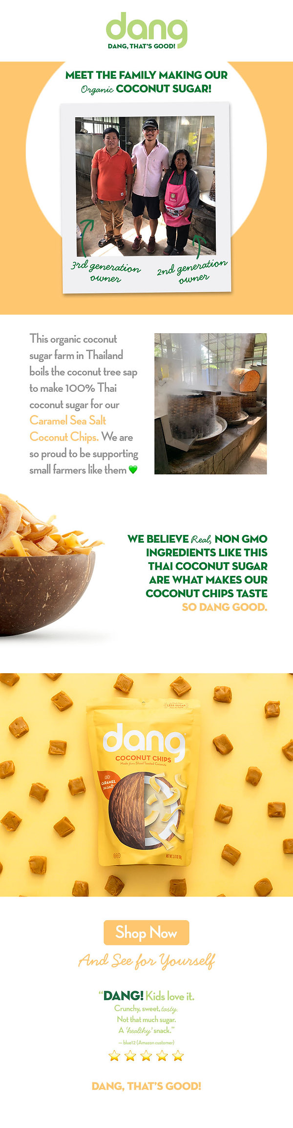 Email Campaign - Coconut Chip Support 04