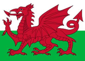 Euro 2021 Welsh Dragon Pork Sausage