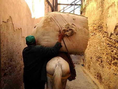 Fez and the Atlas Mountains