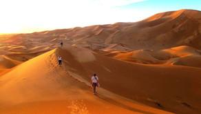 A Magical Night in the Sahara Desert