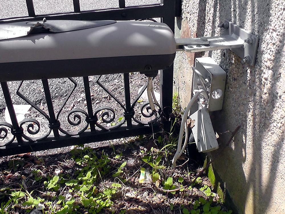 cane morde impianto cancello