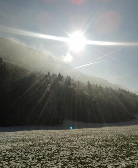 Rayon de soleil en hiver