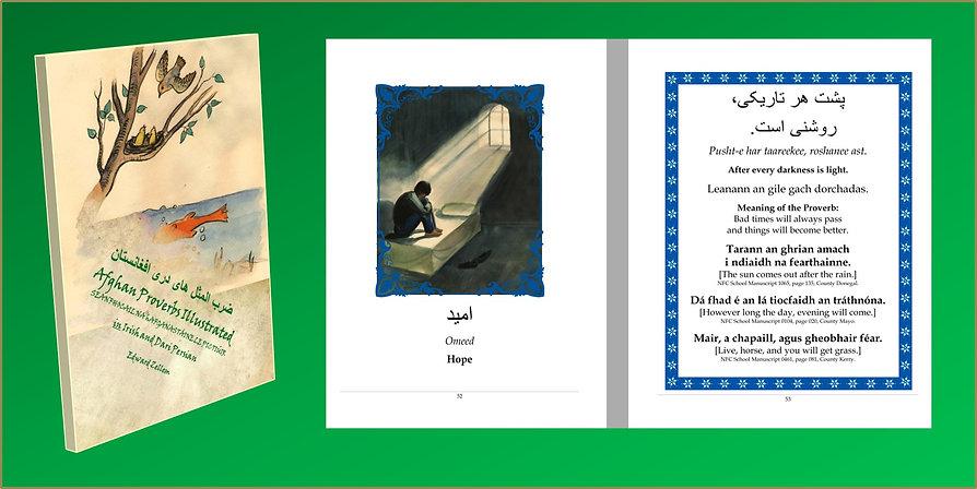 Afghan Provebs in Dari-Irish