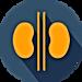 Abdominal Sonography Course