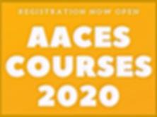 AACES%202020_edited.jpg