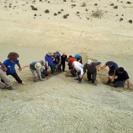 סדנת גיבוש ODT במדבר