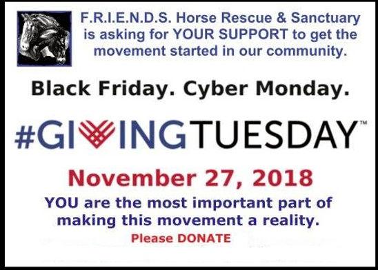 Giving Tuesday  2.jpg