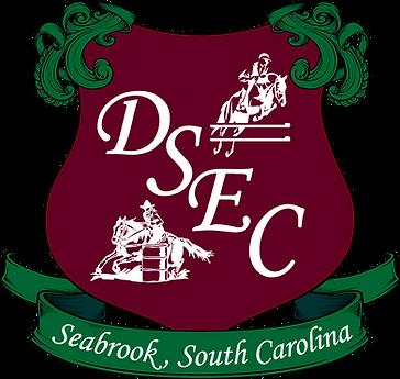DSEC logo 2020.png