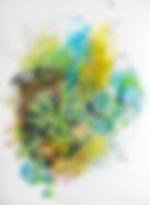 Biosphere13  14x11 .JPG