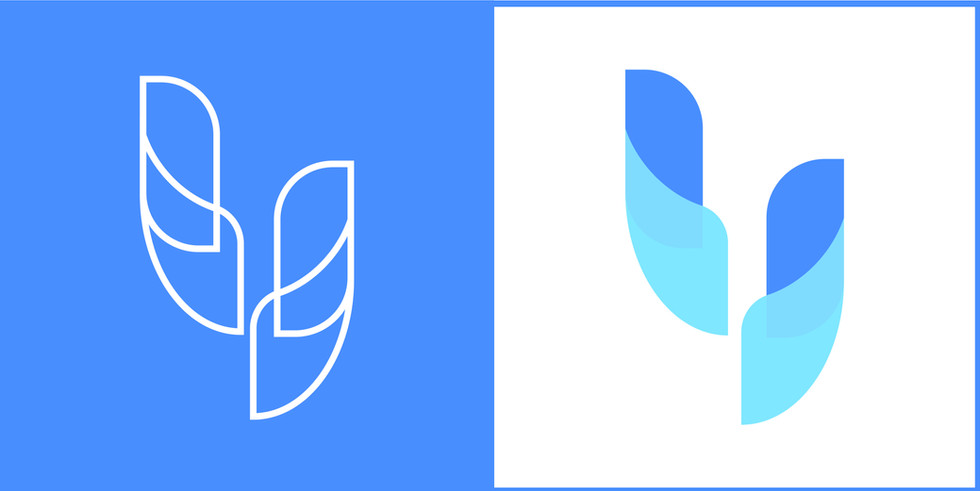 ydcare logo project-10.jpg