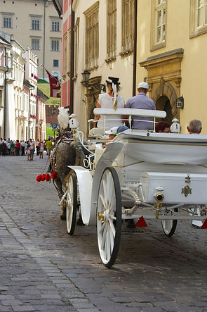 ellie bell photography, travel, krakow, poland, horse, carraige, horse and carriage, summer, europe