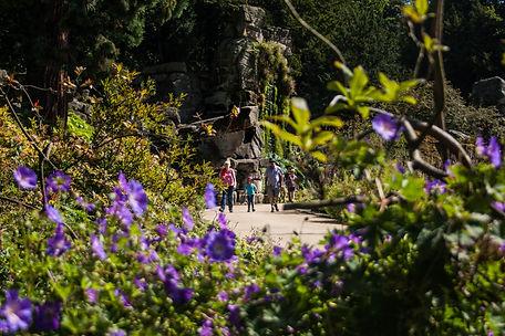 ellie bell photography, chatsworth, chatsworth gardens, flowers, walk, hike, family, child