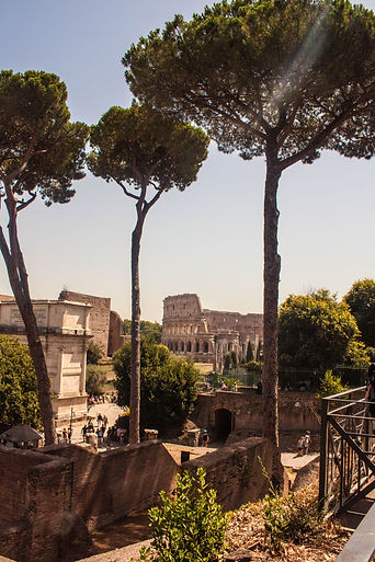 ellie bell photography, rome, italy, summer, architecture, colosseum, ruins, roman, trees