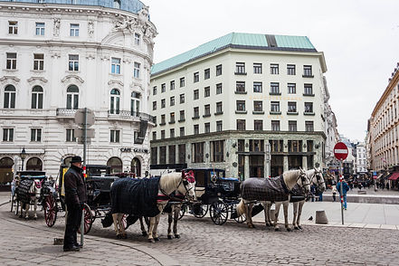 ellie bell photography, vienna, austria, europe, winter, horses, carriage, horse and carriage