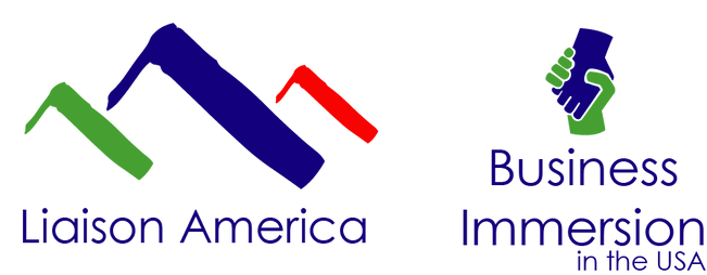 logo business immersion usa.png