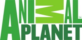 Animal_Planet_channel_logo_green.png