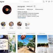 Instagram @lesvignals