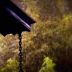 rainyday.JPG