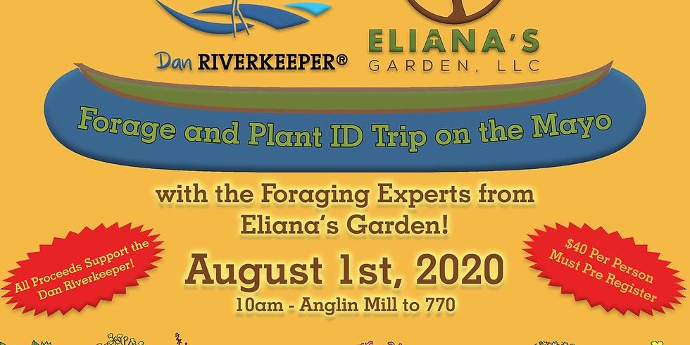 Forage and Plant ID Trip on the Mayo River!